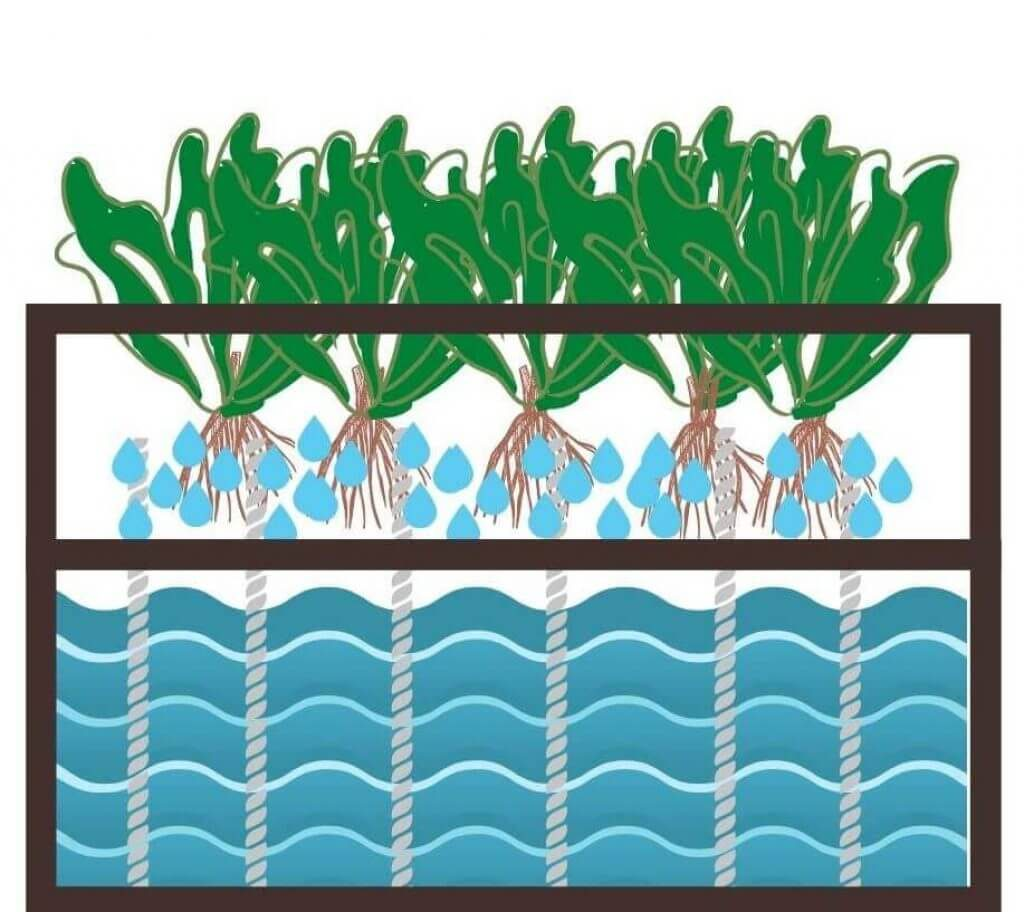 wicking irrigation system
