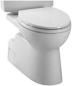 Double Cyclone Flush Toilets